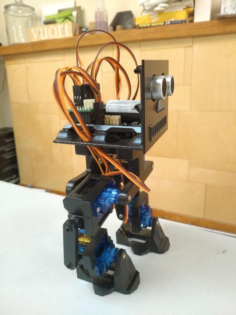 Biped 3DoT Robot